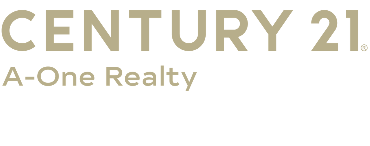 Robert Staglik of CENTURY 21 A-One Realty logo