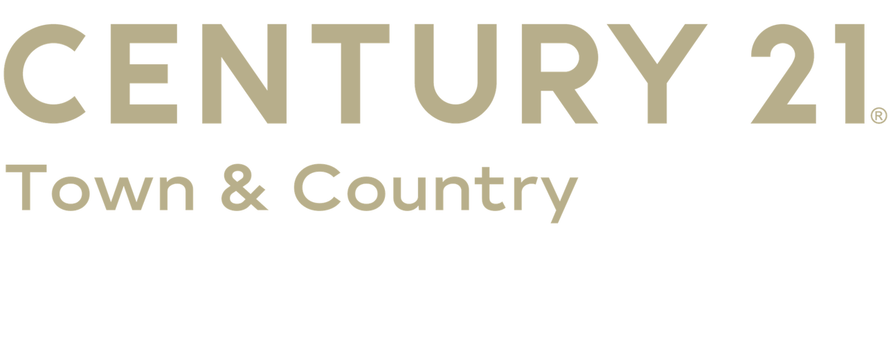 Ariel Sanchez of CENTURY 21 Town & Country logo
