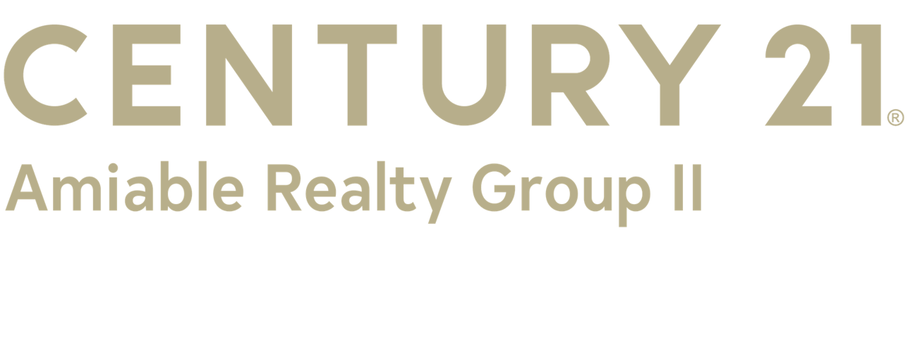 Michael Driscoll of CENTURY 21 Amiable Realty Group II logo